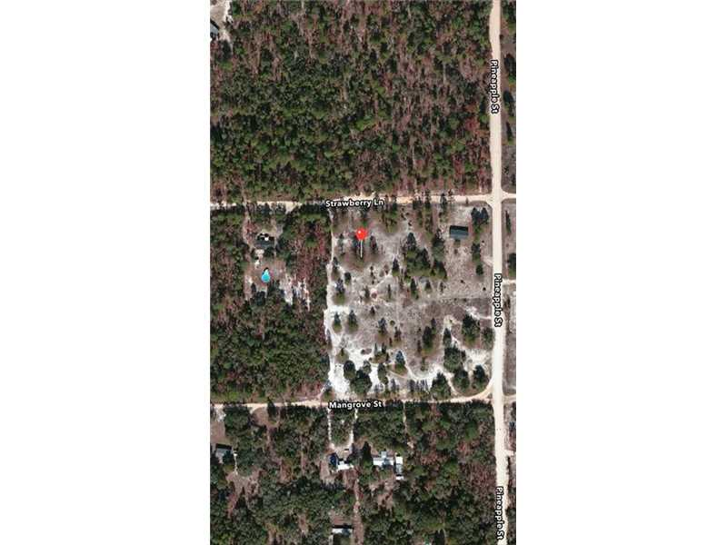 137 Strawberry Ln, Pomona Park, FL 32181