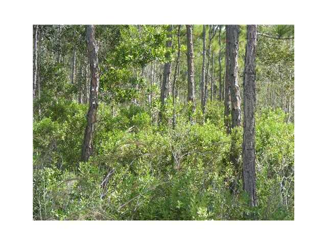 Tree Top Trl, Fort Pierce, FL 34951