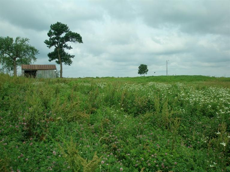 Image of Acreage for Sale near Garwin, Iowa, in Tama county: 2.76 acres