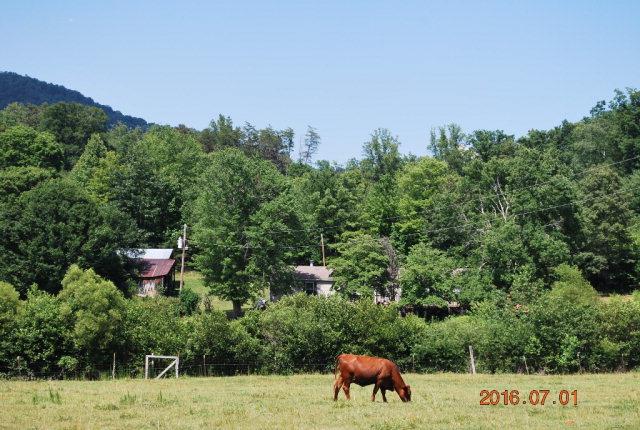 Photo of 1190 Hemphill Road  Union Mills  NC
