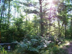 primary photo for Murray Lane, Pembine, WI 54156, US