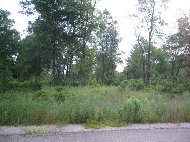 Real Estate for Sale, ListingId: 17199797, Crivitz, WI  54114