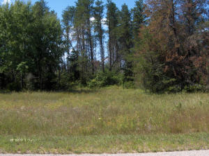 2nd Ave & Gene St, Crivitz, WI 54114