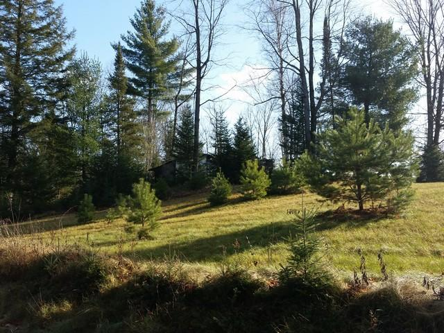 W7689 Marquis Road Amberg, WI 54102