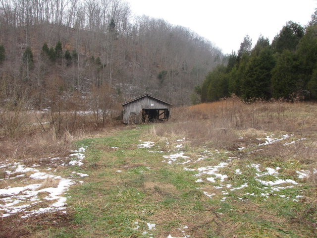 90 acres by Booneville, Kentucky for sale