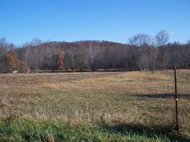 138 acres by Berea, Kentucky for sale