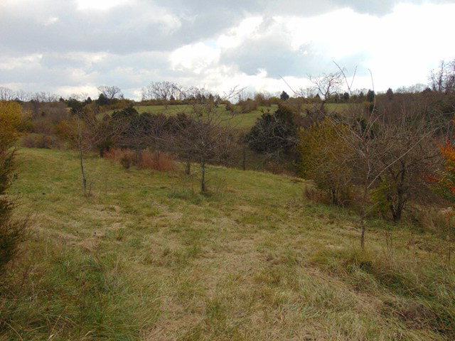 210 acres Richmond, KY