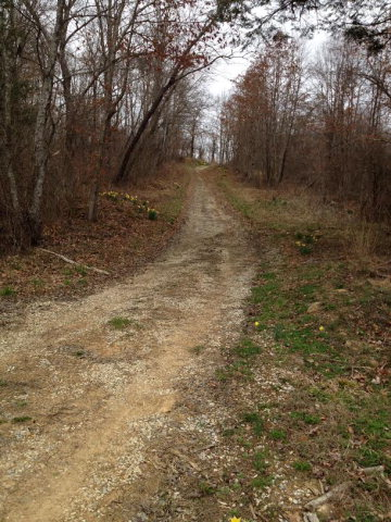 55.07 acres Booneville, KY