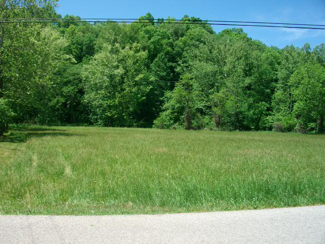 219 acres Booneville, KY