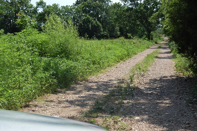 Real Estate for Sale, ListingId: 28793198, Locust Grove,OK74352