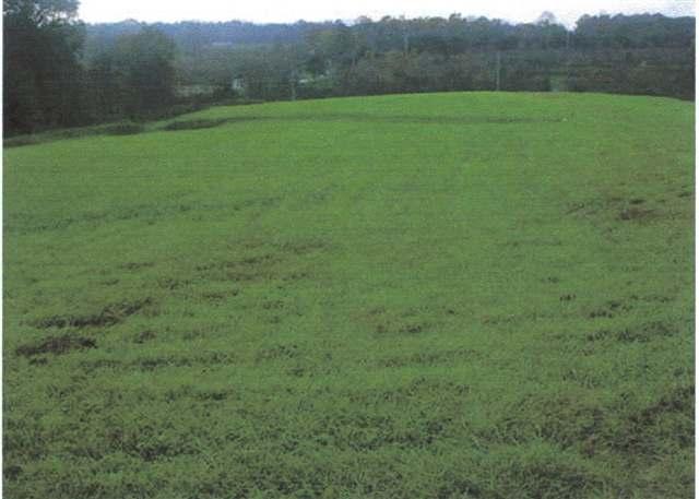 11.98 acres Taylorsville, NC