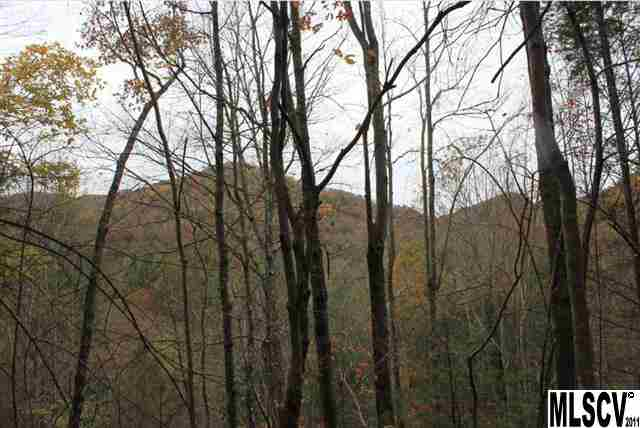 Lot 47a Buffalo Cove Rd # 47A, Lenoir, NC 28645