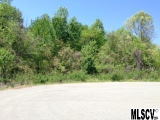 Land for Sale, ListingId:28053062, location: 1242 39TH ST CIR SW Hickory 28602