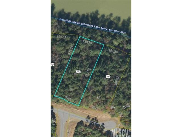 202 PIER POINT Drive 61 Connelly Springs, NC 28612
