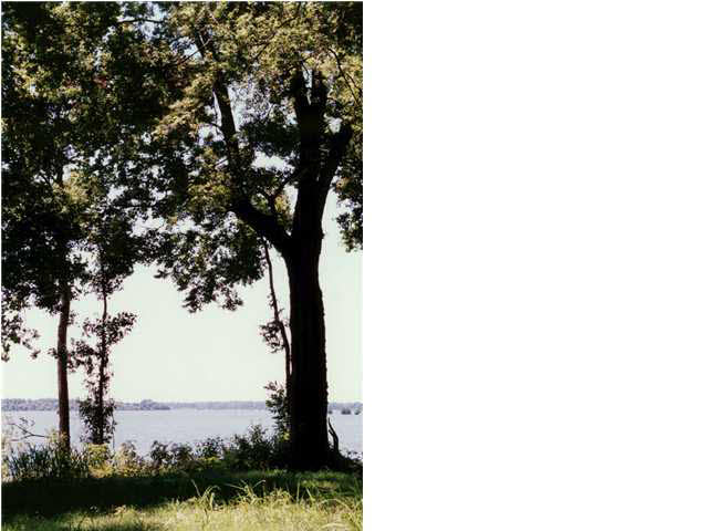 Real Estate for Sale, ListingId: 32546520, Vicksburg,MS39183