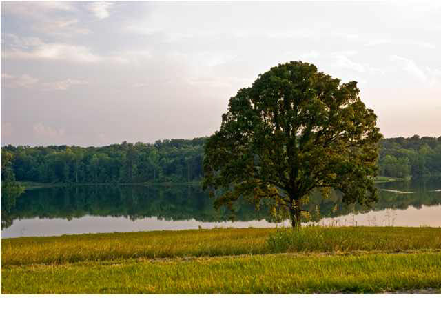 Real Estate for Sale, ListingId: 25597427, Madison,MS39110