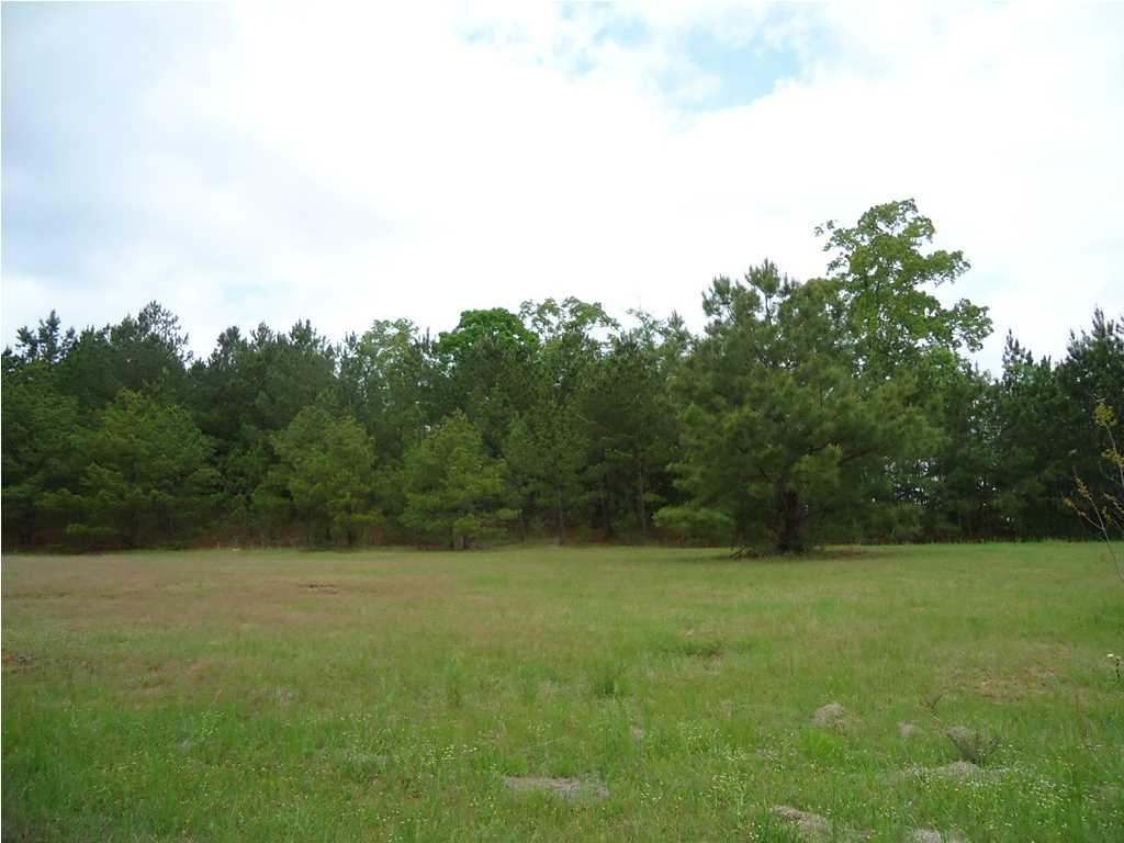 Real Estate for Sale, ListingId: 28410866, Carthage,MS39051