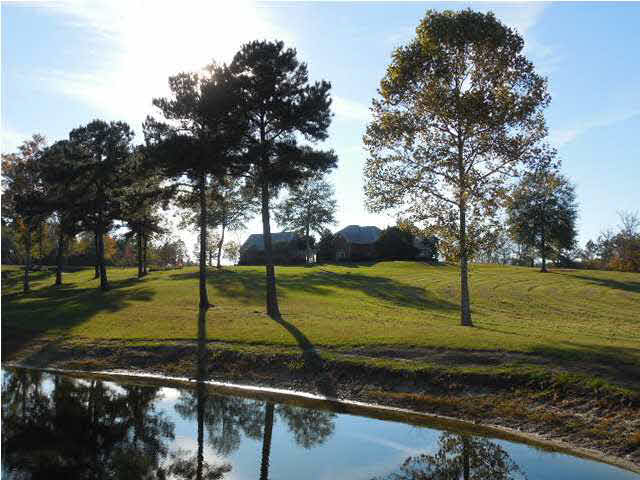 Real Estate for Sale, ListingId: 25981928, Terry, MS  39170
