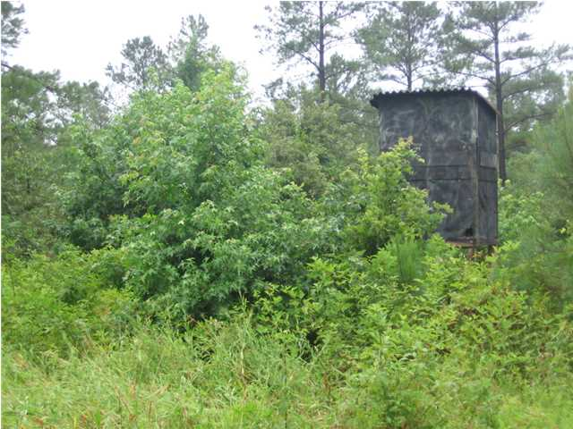 Real Estate for Sale, ListingId: 28644970, Tillatoba, MS  38961