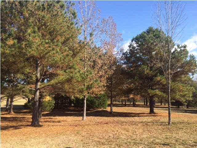 3.82 acres by Brandon, Mississippi for sale