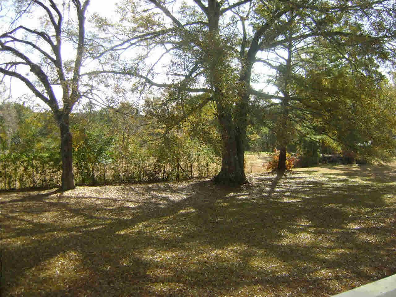 251 Benson Rd, Silver Creek, MS 39663