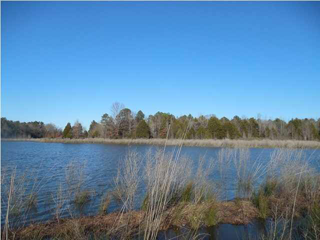 Real Estate for Sale, ListingId: 31011219, Tillatoba, MS  38961