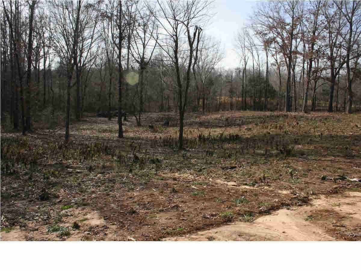 Real Estate for Sale, ListingId: 32546798, Benton,MS39039