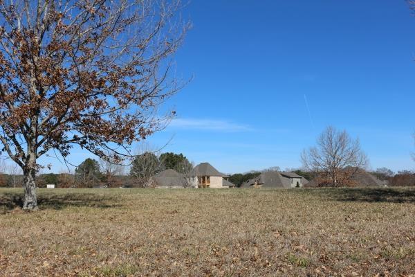 Real Estate for Sale, ListingId: 32298460, Madison,MS39110