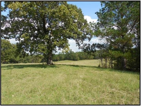 Real Estate for Sale, ListingId: 32693882, Thomastown,MS39171