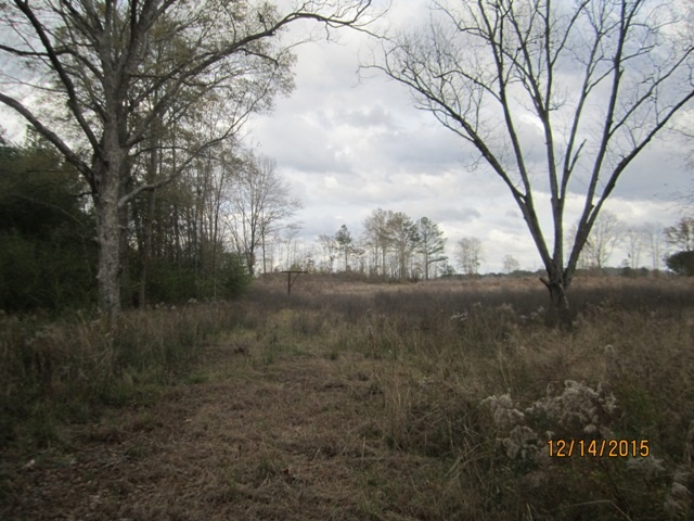 Real Estate for Sale, ListingId: 36593609, Forest,MS39074