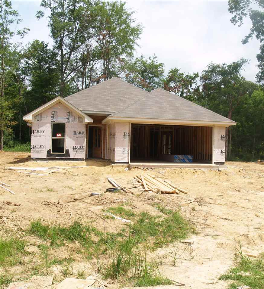 Photo of 221 TERRY BROOK DR  Terry  MS