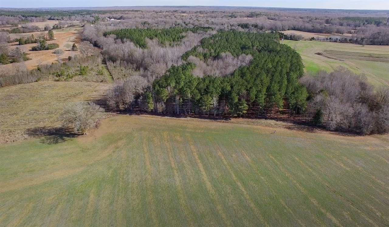 Image of  for Sale near Goodman, Mississippi, in Holmes County: 130 acres
