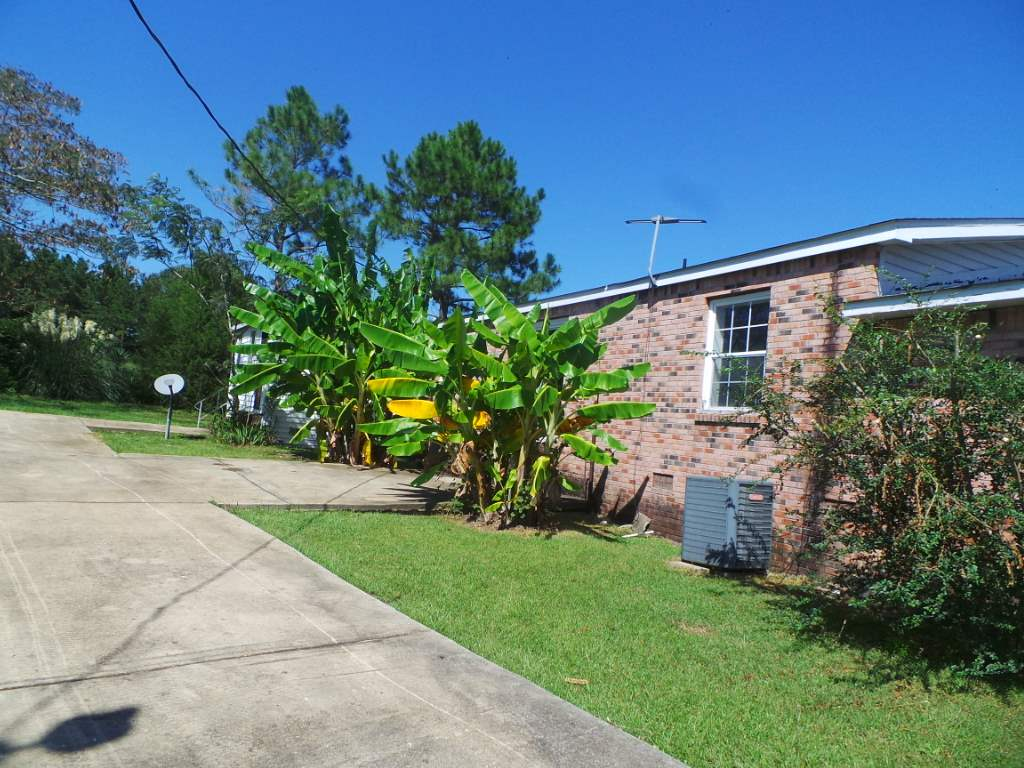 Photo of 7 WILLIE ROBERTS RD  Jayess  MS