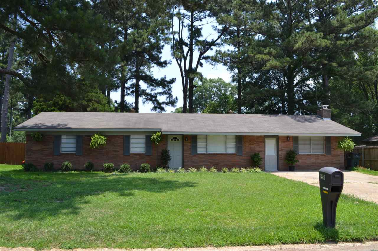 primary photo for 238 W PINE DR, Pearl, MS 39208, US