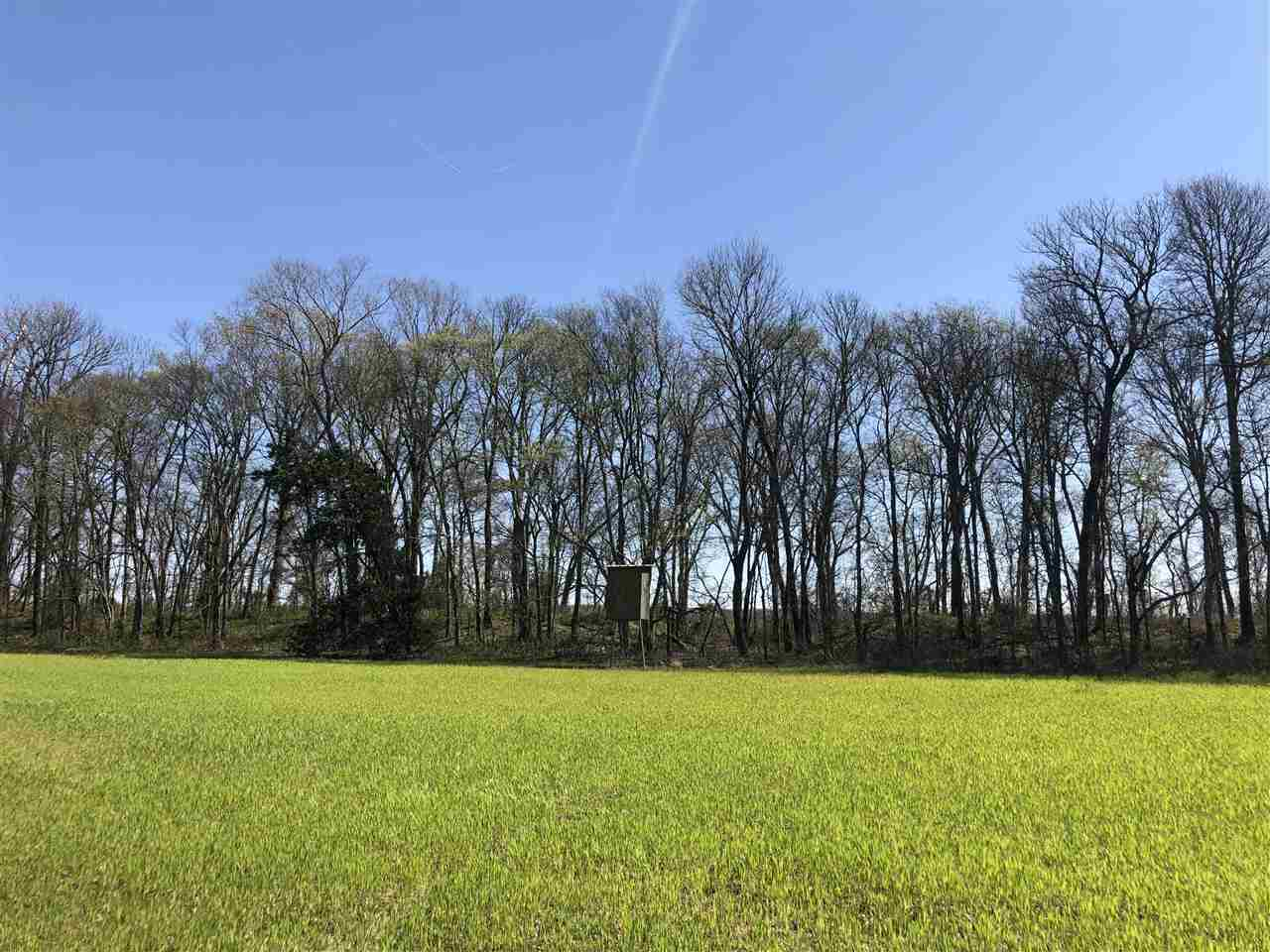 primary photo for 0 COUNCE RD, Robinsonville, MS 38664, US