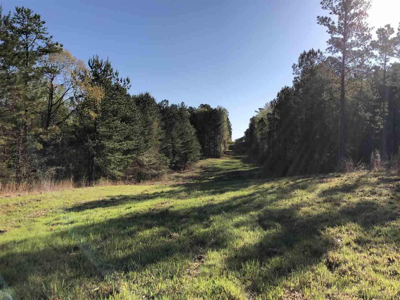 primary photo for 0 COUNTY RD 4007, Goodman, MS 39108, US