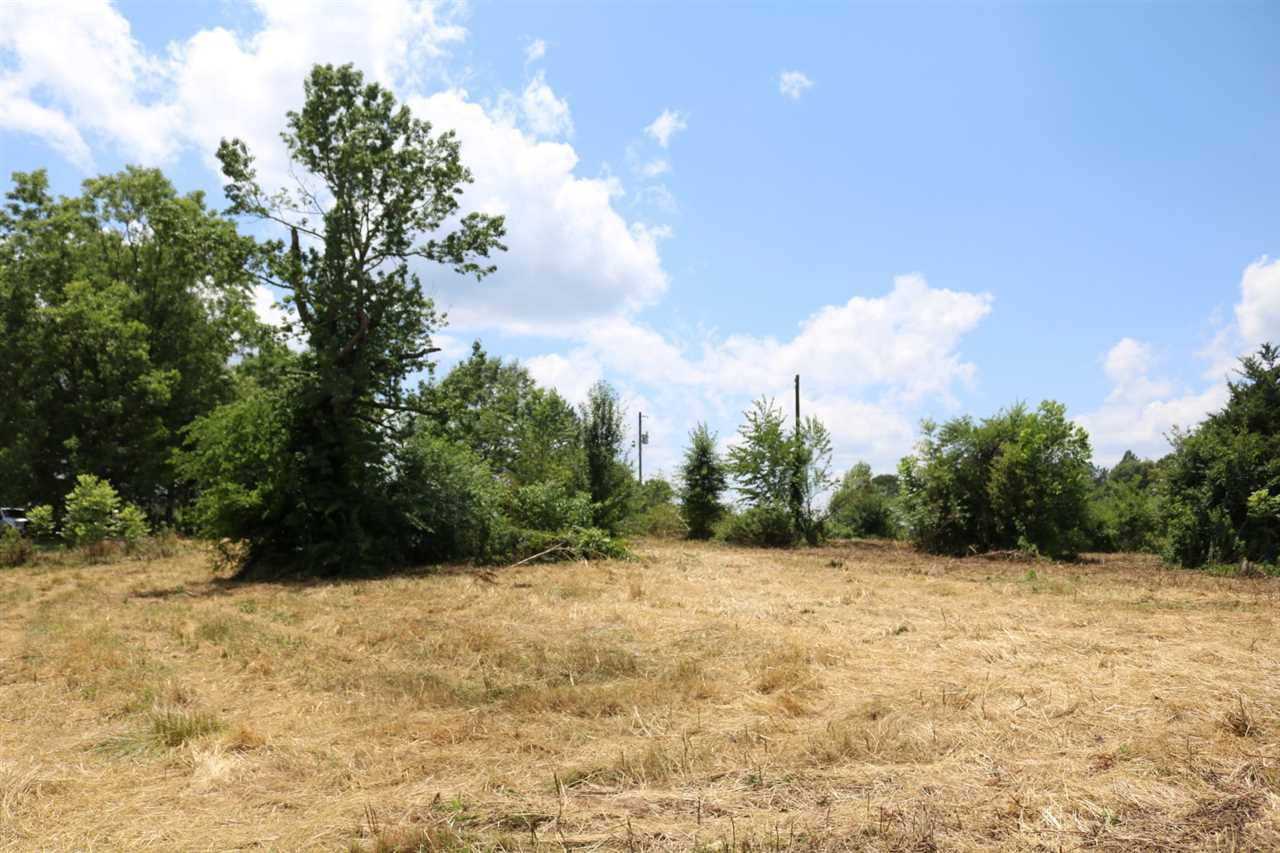 primary photo for 0 PURVIS RD, Walnut Grove, MS 39189, US
