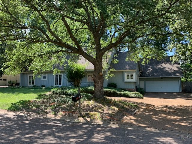 primary photo for 206 GREENFIELD PL, Brandon, MS 39047, US