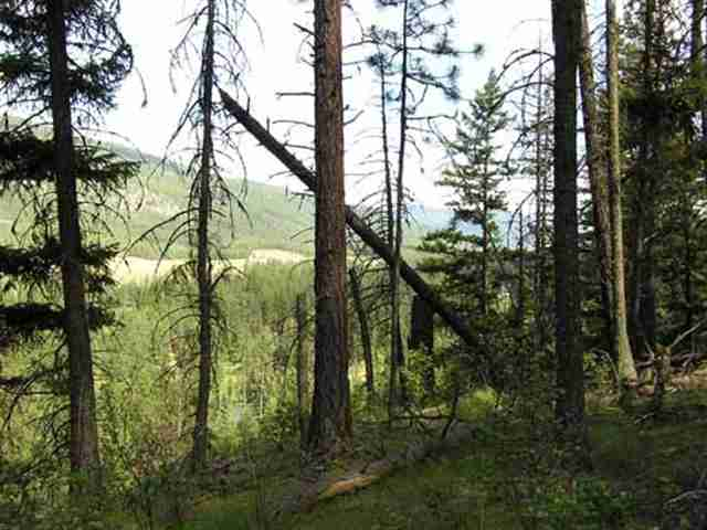 21.3 acres in Superior, Montana