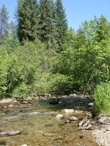 4 acres in Trout Creek, Montana