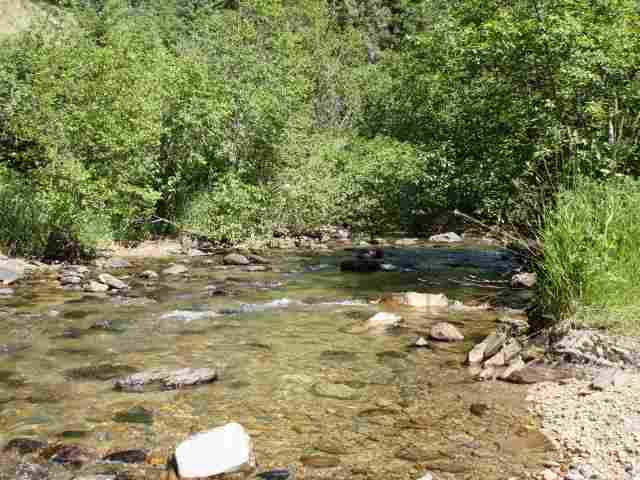 4 acres Trout Creek, MT