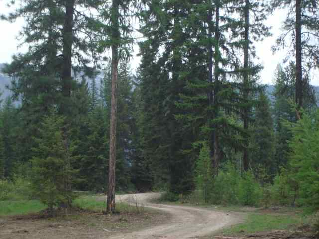 2.33 acres in Trout Creek, Montana