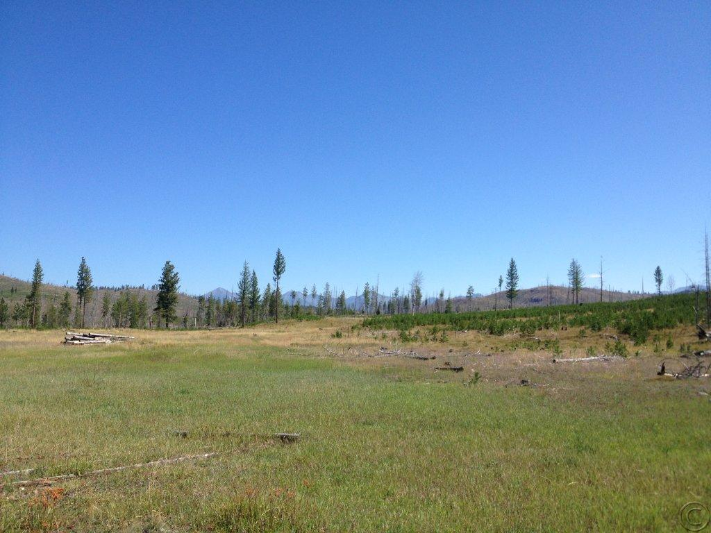 20.81 acres by Seeley Lake, Montana for sale