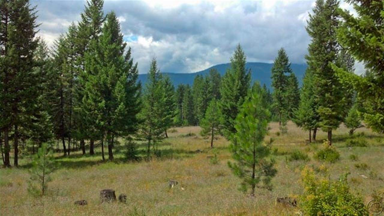 20.2 acres Trout Creek, MT