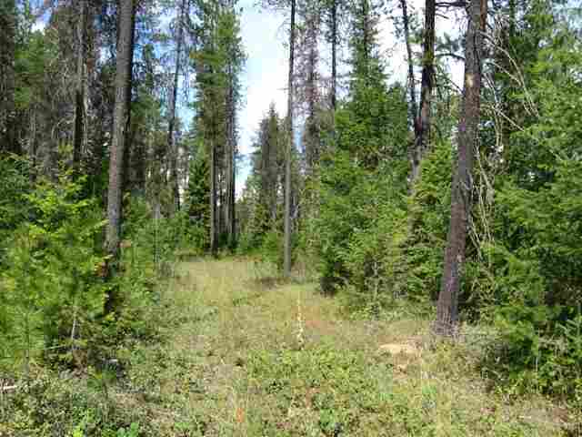 3 acres in Trout Creek, Montana