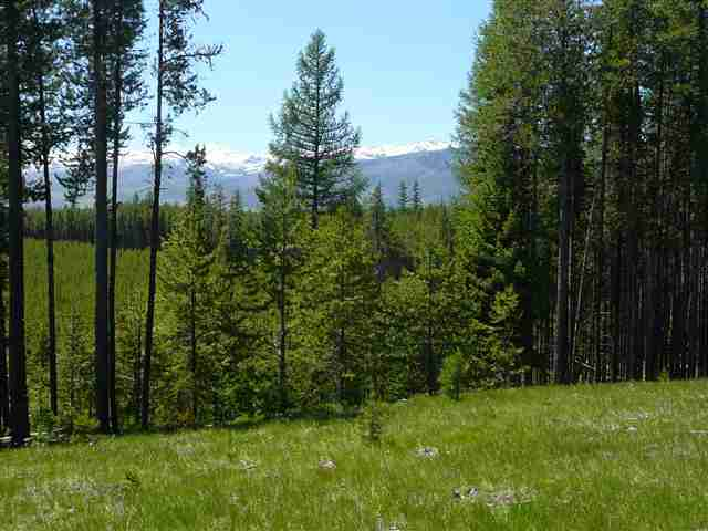 68.76 acres in Swan Valley, Montana