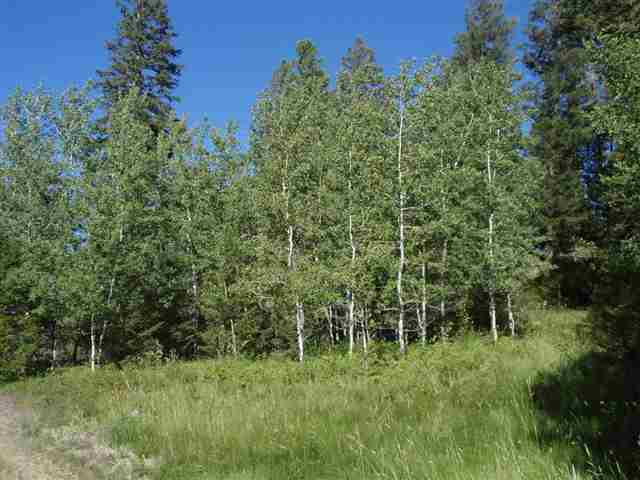 20.29 acres Helmville, MT