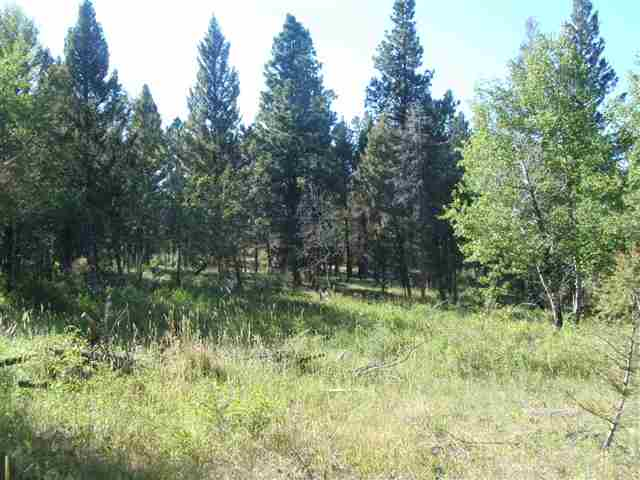 20 acres Helmville, MT