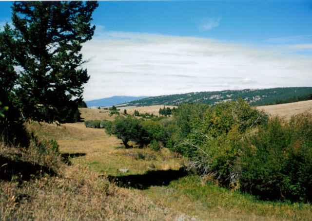 120 acres in White Sulphur Springs, Montana