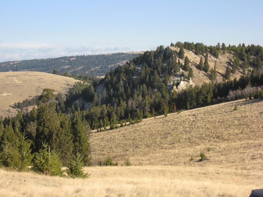 160 acres in White Sulphur Springs, Montana